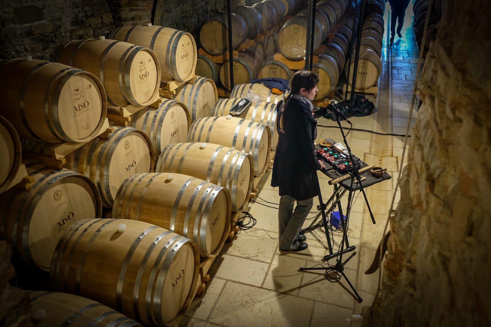 Il futuro del vino è sostenibilita', buonsenso e bellezza