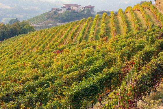Iscritti 5 nuovi paesaggi rurali italiani