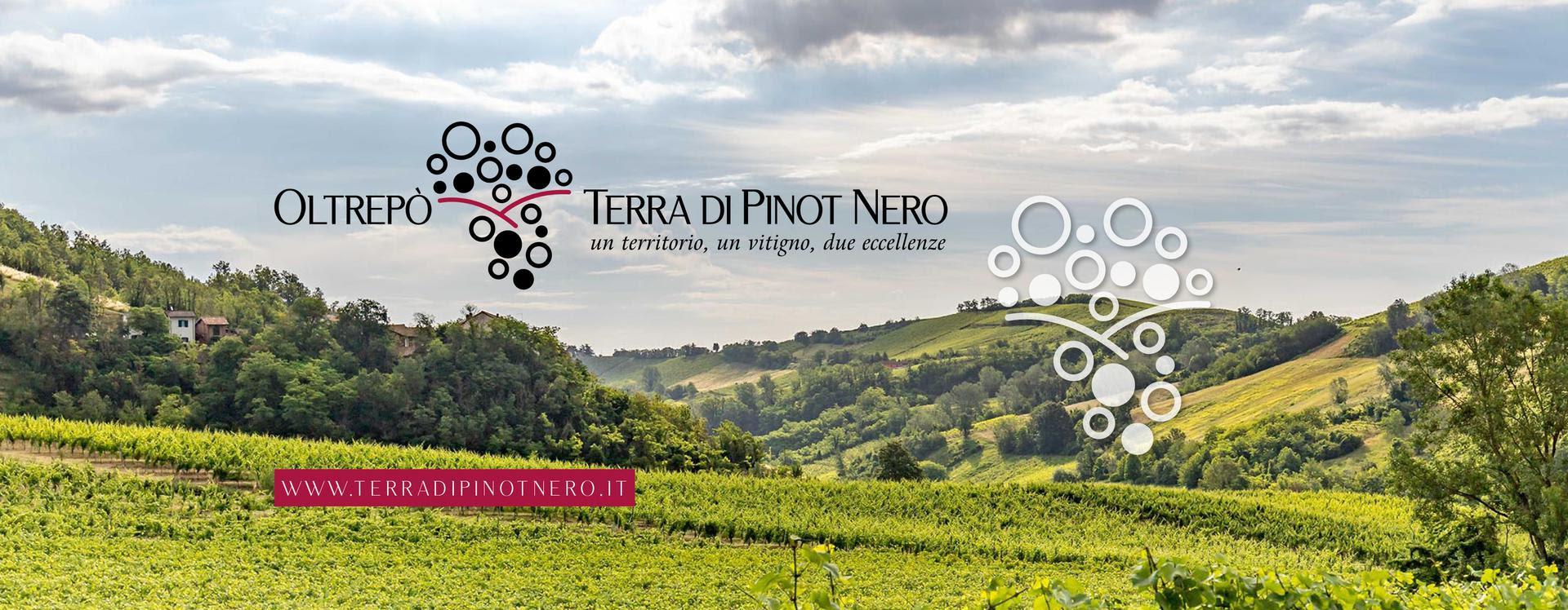 Appuntamento con Oltrepò - Terra di Pinot Nero