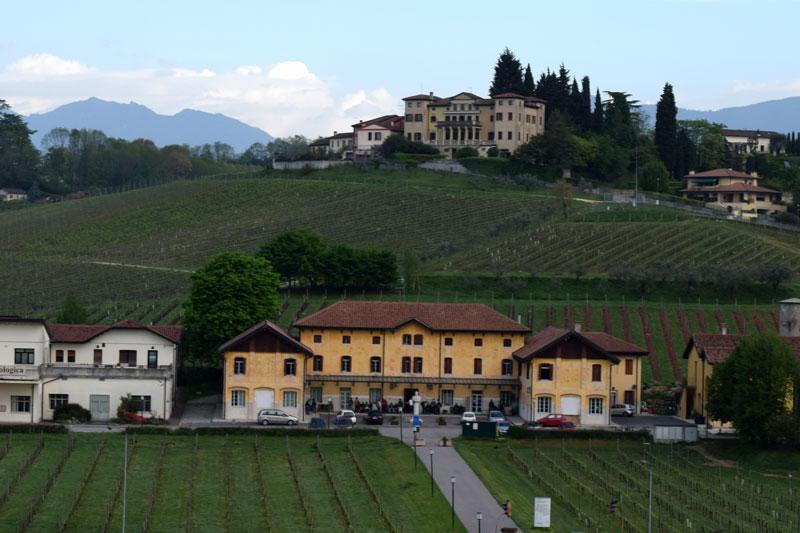 Conegliano: 16 ettari di nuovi terreni per l'Istituto Cerletti