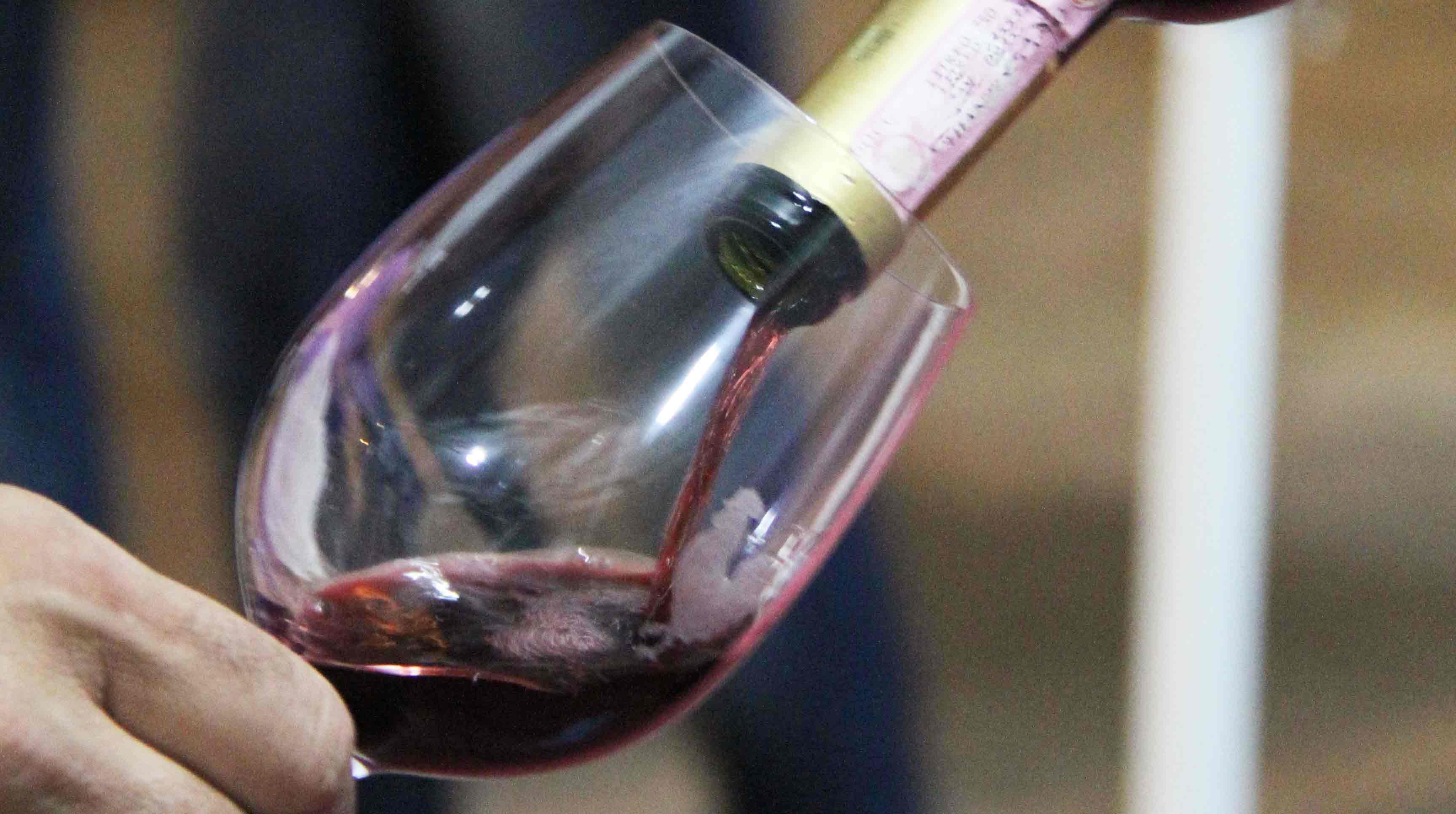 Master of Wine in Valpolicella