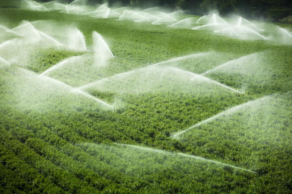 Acqua per uso irriguo, nuovo regolamento