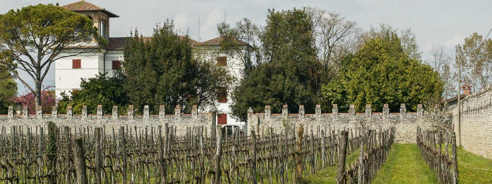 Le Radici del Vino: San Giorgio della Richinvelda entra nell'Associazione nazionale
