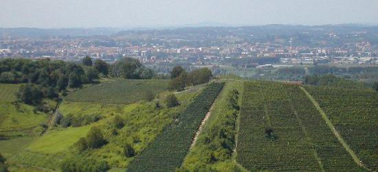 Asti rivendica la Docg: nasce l'associazione dei viticoltori astigiani