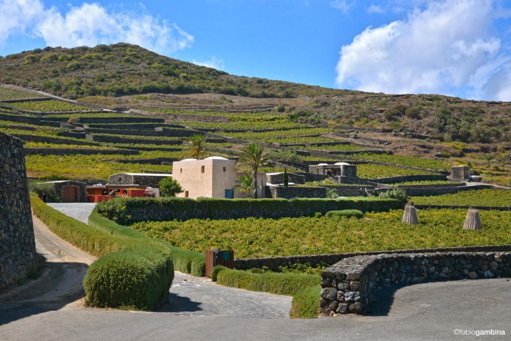 Passitaly, nuovi scenari per Pantelleria