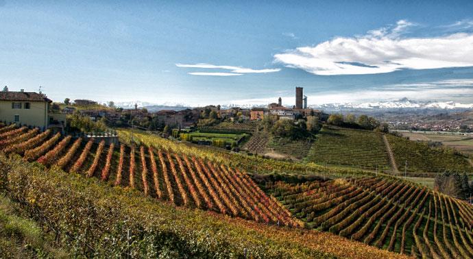 Nasce l'Osservatorio del vino italiano
