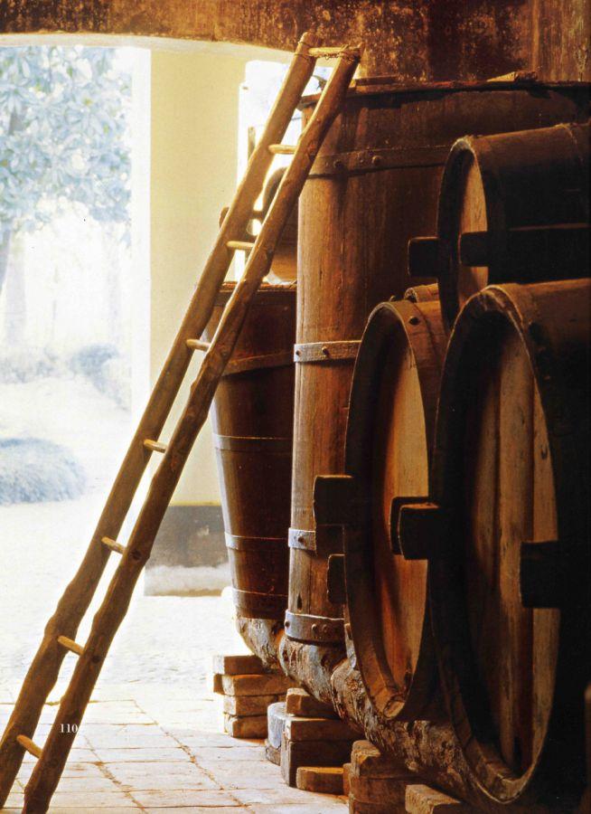 Novità al  Museo del Vino di Sala Baganza