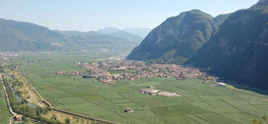 Citta Del Vino Trentino Le Citta Del Vino Per Una Viticoltura Di