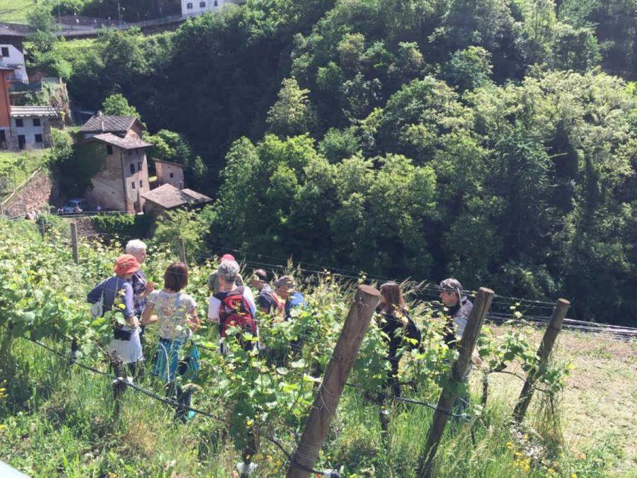 A maggio in Trentino torna
