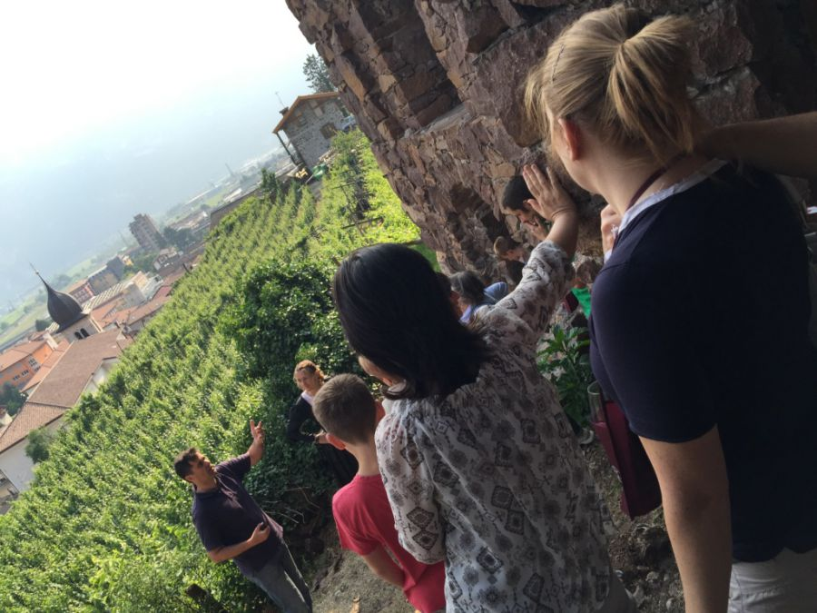 Sette appuntamenti in Trentino per  Gemme di Gusto