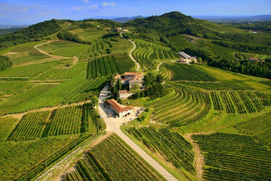 Friuli VG: Città del Vino a raccolta per progettare le Strade del Vino e dei Sapori