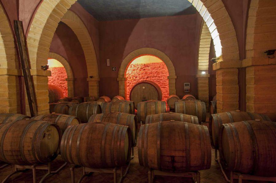 Torna Inycon, la più antica manifestazione sul vino in Sicilia