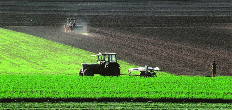 Approvato DL enti locali con interventi per agricoltur