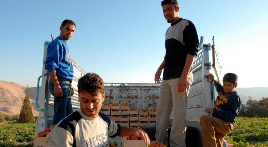 Fondo Internazionale per assistere rifugiati nelle aree rurali