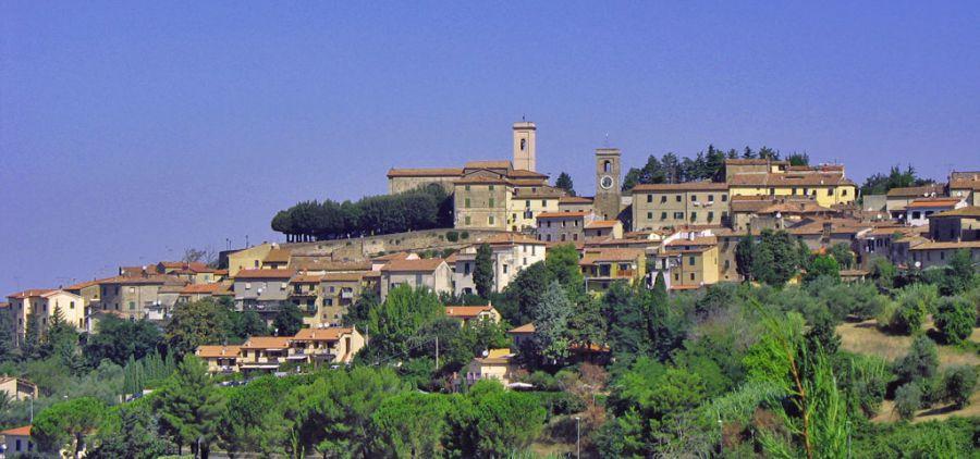 Montescudaio, tra storia e futuro nel nome del vino