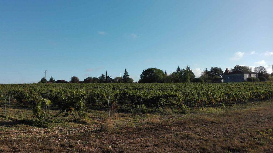 Grande successo dei prodotti tipici emiliani a Cahors nel sud della Francia
