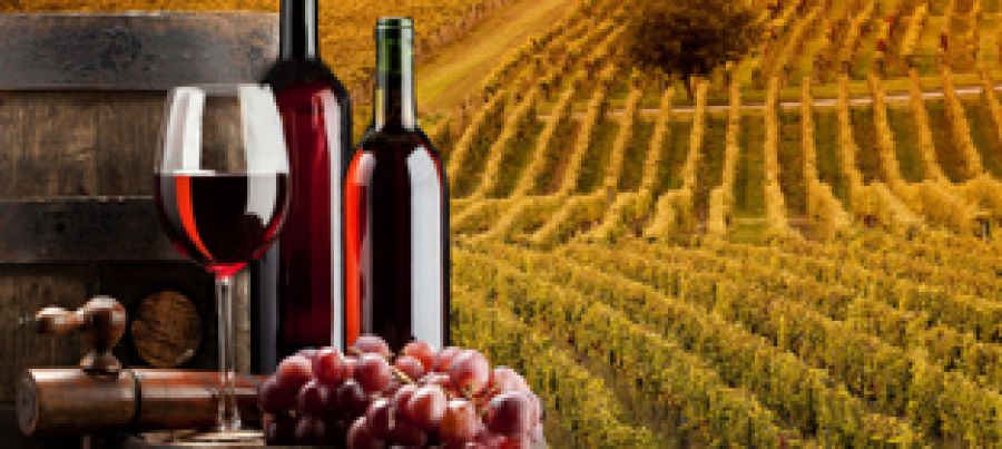 Un Master per Ambasciatori del vino italiano