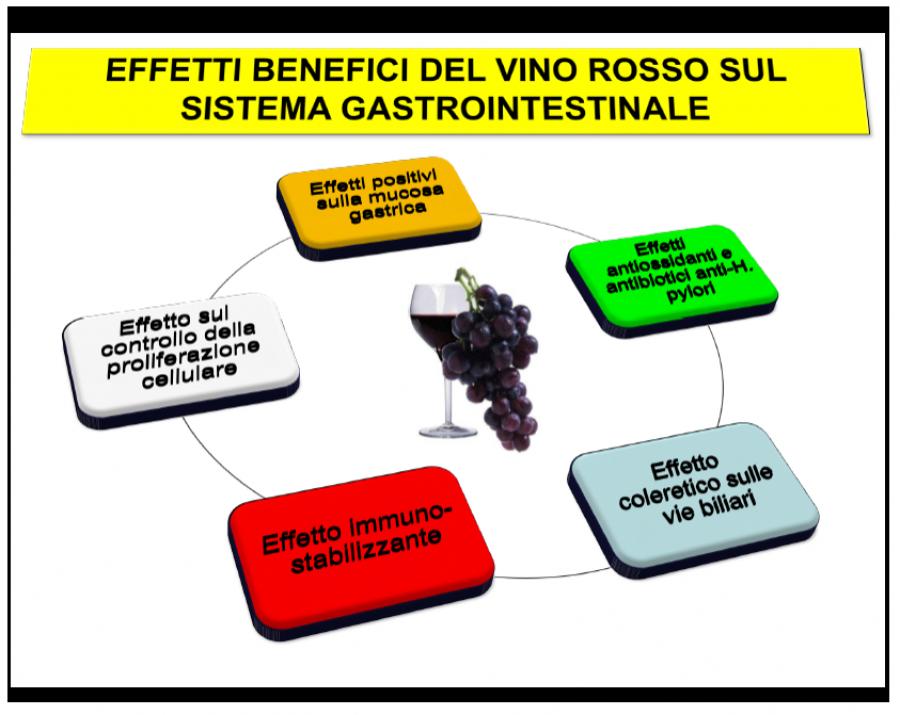 Il vino fra Salute, Eros e Trascendenza