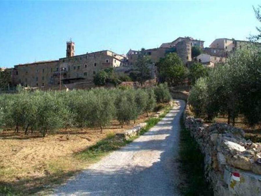Pianificare le Città del Vino. L'esempio del Comune di Rapolano Terme