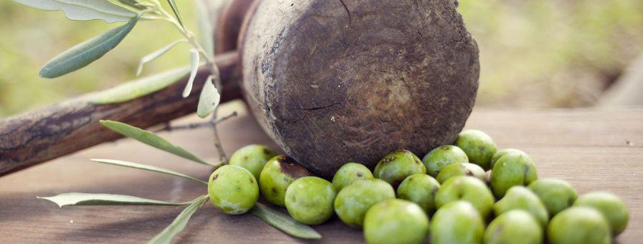 Planeta pianta altri 13 mila alberi di olivo a Capparrina