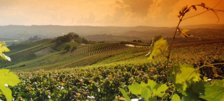 Prorogata iscrizione a ITALIAN AGRIFOOD LAB