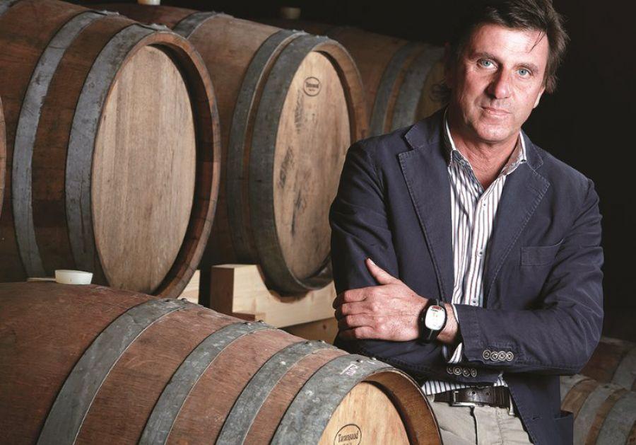 Nasce il Consorzio di Tutela Doc 'Delle Venezie', il Pinot Grigio del Triveneto