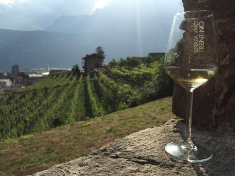A tutto Nosiola, un mese di eventi in Trentino