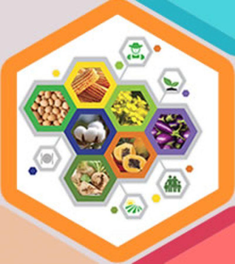 Rapporto colture biotech/OGM nel 2016