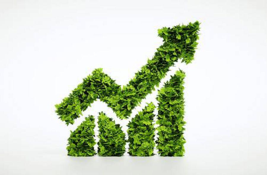 Mi Ambiento: più eco alla sostenibilità