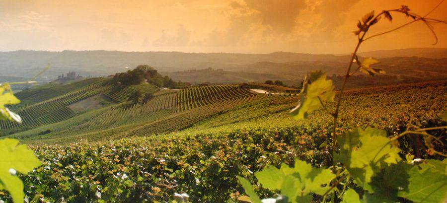 Langhe Roero e Monferrato nell'Unesco