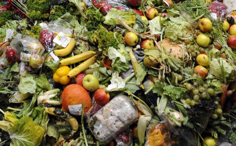 500mila euro contro lo spreco alimentare