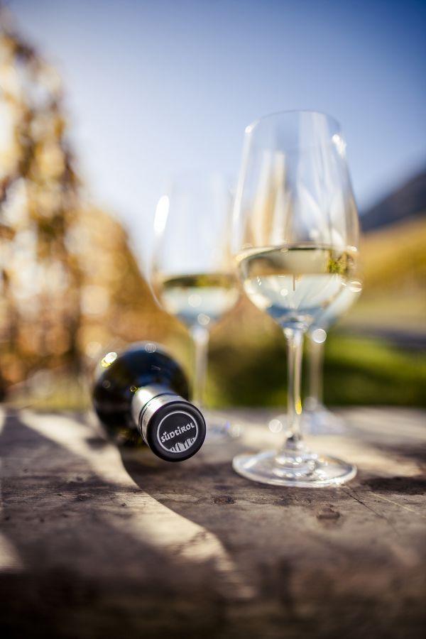 Alto Adige Wine Summit: evento esclusivo che celebra i vini del territorio