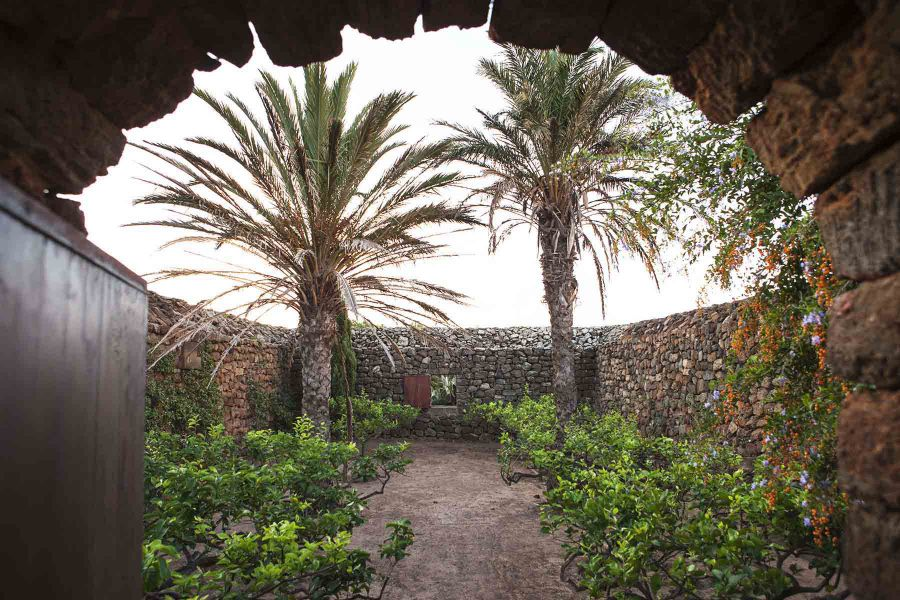 Scoperto il più grande giardino pantesco