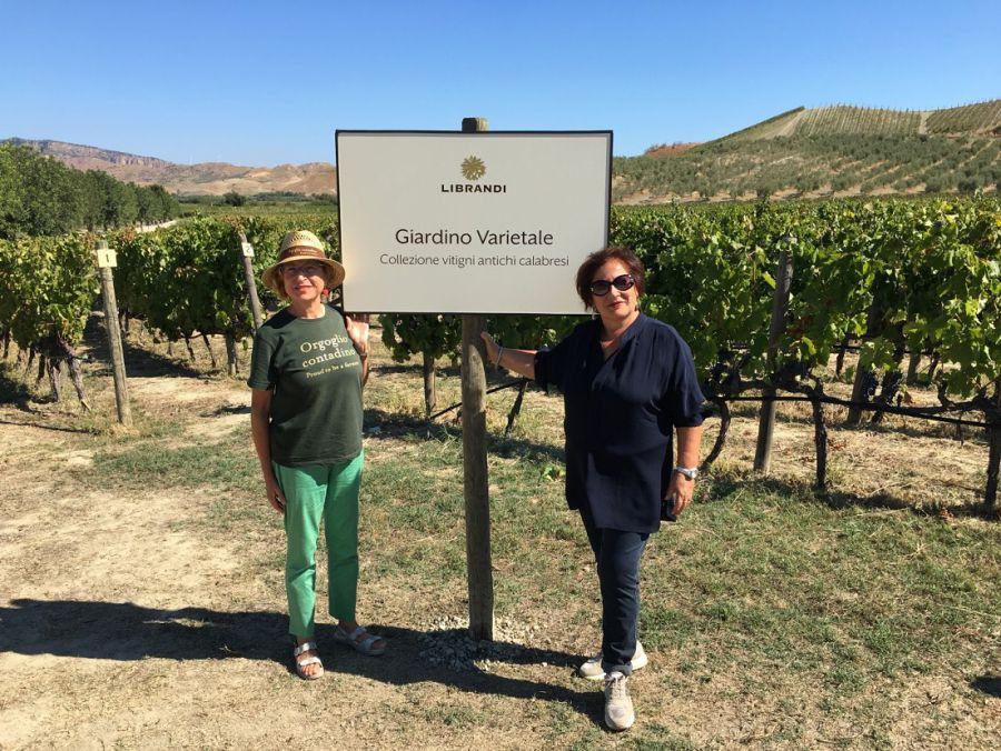 Calabria. Le Donne delle Città del Vino