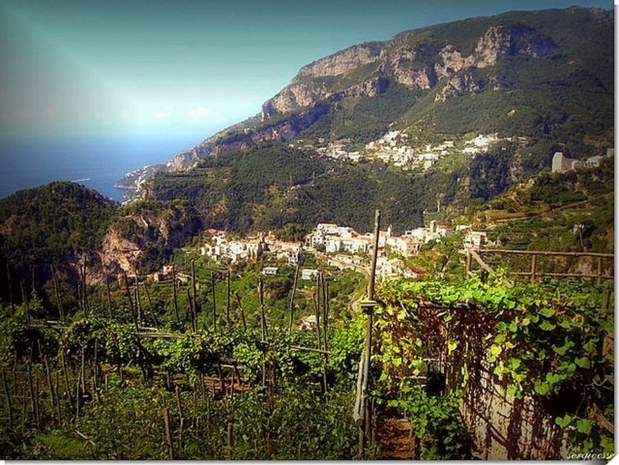 Enoregioni italiane: Costiera Amalfitana