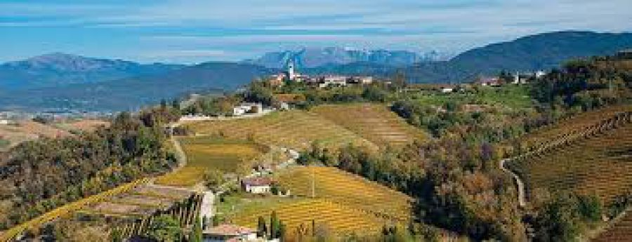 Trail del Collio: un percorso transfrontaliero pensando all'UNESCO