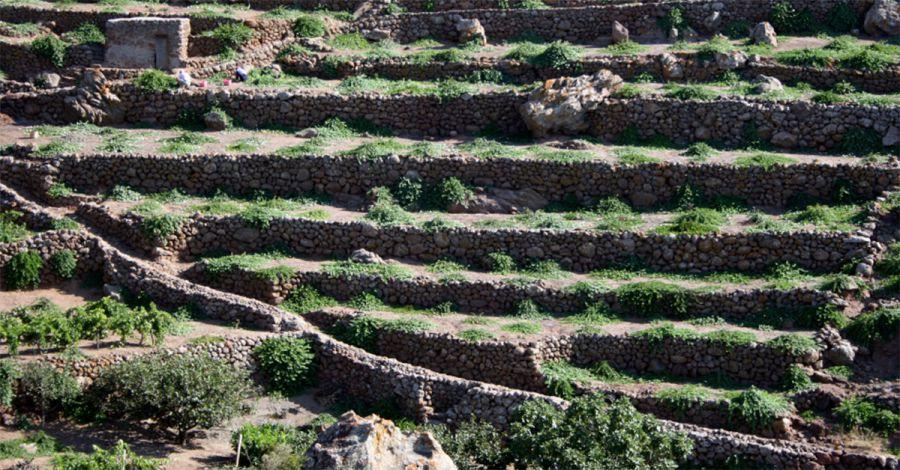 Pantelleria nel Registro dei Paesaggi Rurali Storici