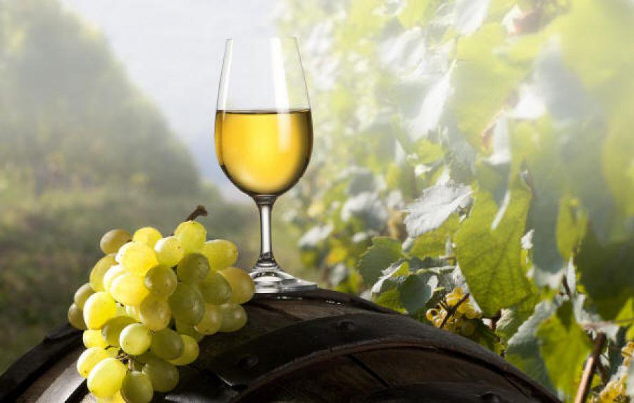 Viticoltori di Lapio. Un nuovo vino per rilanciare il territorio del Fiano