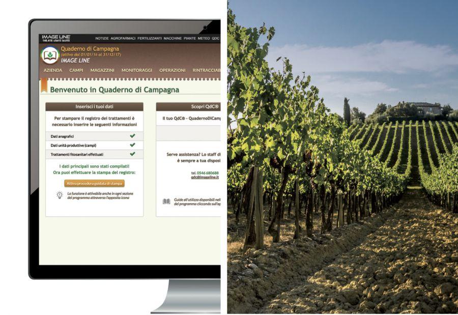 Digitale e sostenibilità dal campo al calice di vino
