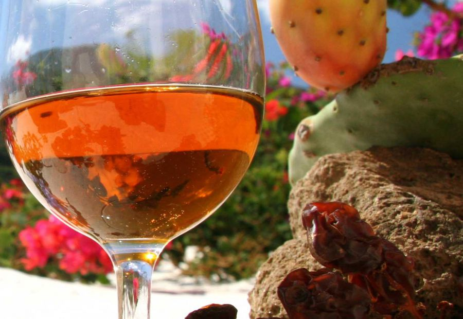 Pantelleria ospita