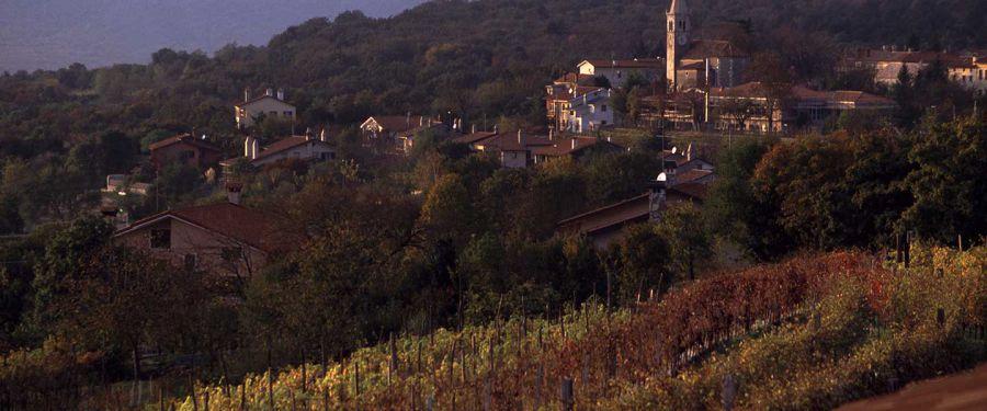 Città del Vino - Una storia lunga 25 anni