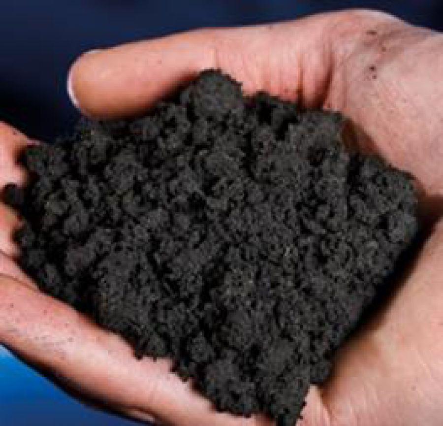 Carta Italiana del Carbonio Organico del suolo