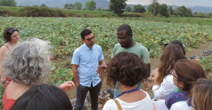 Rapporto sull'Agricoltura Sociale in Italia