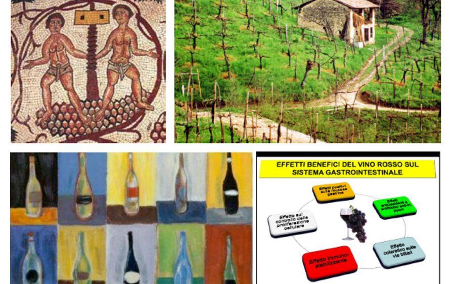 Storia, Salute, Paesaggio: tre modi di declinare il vino