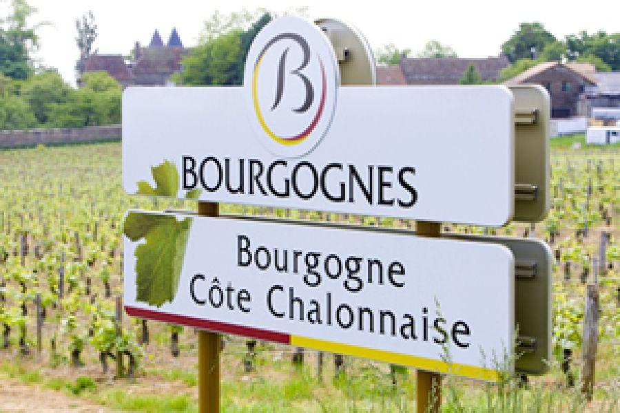 A Sizzano il cuore viticolo della Francia