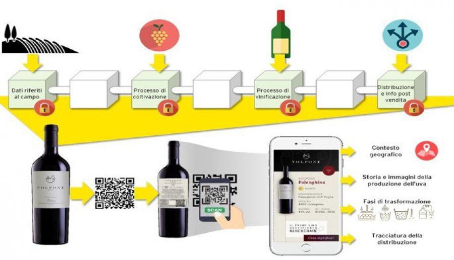 Il vino italiano tra territori e blockchain