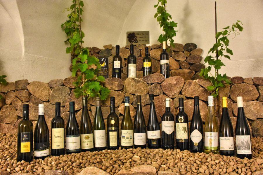 La Rassegna Müller Thurgau: Vino di Montagna verso la 31° Edizione