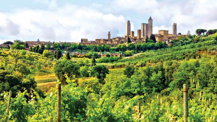 Consorzio del Vino Vernaccia di San Gimignano, ritorno alle origini