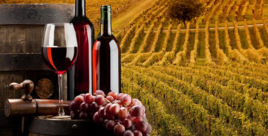 AENOTUR al Wine South America