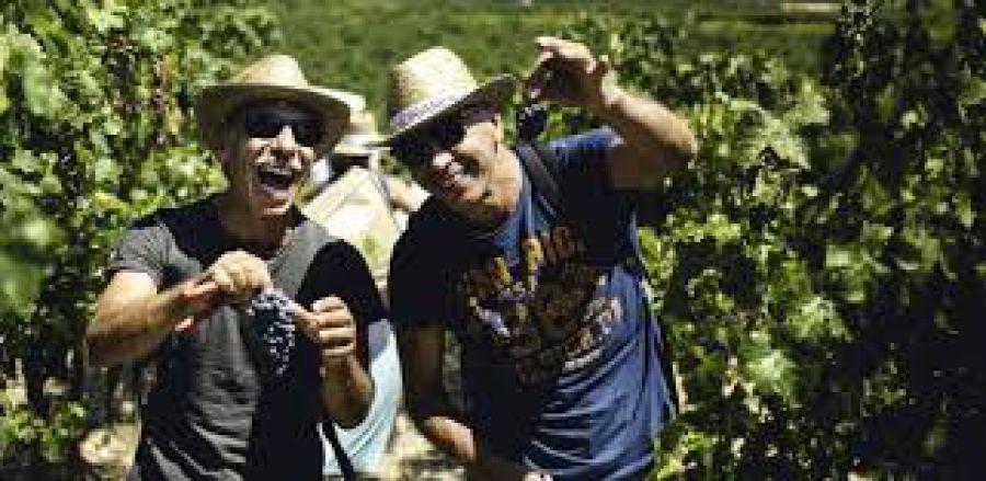 Mandrarossa Vineyard Tour Edizione 2018